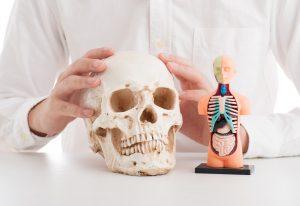 骨折の危険性が増える?!骨粗鬆症の治療薬【使い方・副作用】を徹底解説